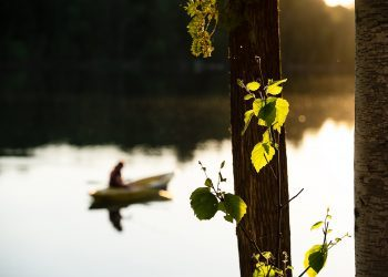 Person canoing in the river
